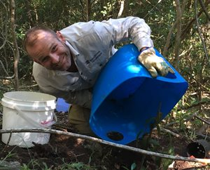 Volunteer team leader, Michael Uhrig, adding mulch during a planting bee at Currumbin Reserve over the weekend.<br/>