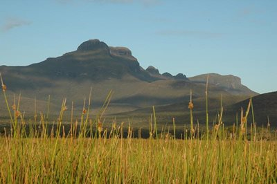 Yarrabee Wesfarmers Reserve, with the Stirling Ranges behind. Photo: Amanda Keesing.