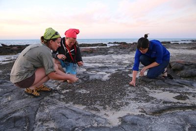 Stromatolite expert Erica Suosaari (left) with Ecologoist Vanessa Westcott (right) and a volunteer. Photo Cineport Media.