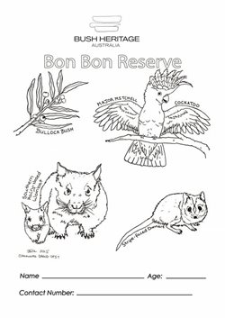 Bon Bon colouring sheet