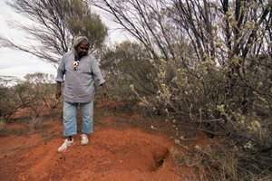 Senior Birriliburu Ranger Rita Cutter points out a Bilby burrow, Birriliburu Indigenous Protected Area.