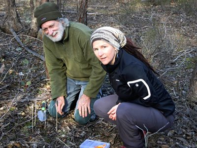 Geoff Neville and Julie Radford replanting orchids at J.C. Griffin Reserve.