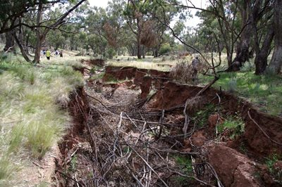 Volunteers inspect an erosion gully at Nardoo Hills in Victoria. Photo Craig Allen.